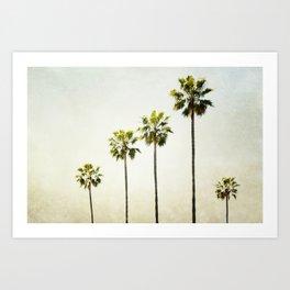 Five Palm Trees Art Print