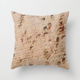 Wall Throw Pillow