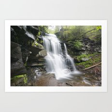 Ricketts Glen Art Print