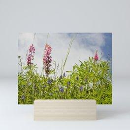 alpine pink wildflowers Mini Art Print