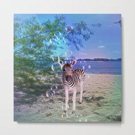 Bubbles with Zebra Metal Print