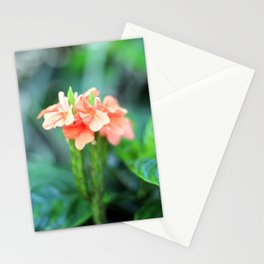 Flower 1 Stationery Cards