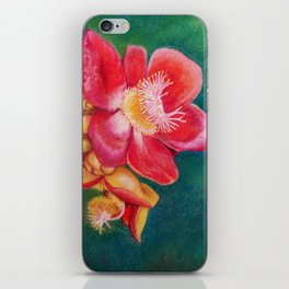 Canonball Flower in soft pastel iPhone Skin