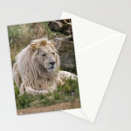 Lion Resting Stationery Cards