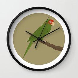 Mitred Parakeet Wall Clock