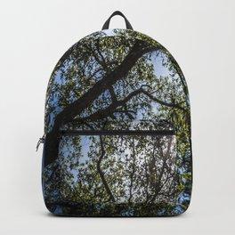 Upwards Backpack