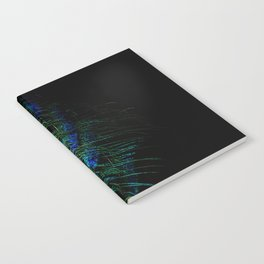 Peacock Details Notebook