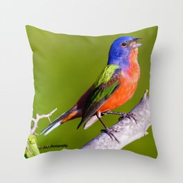 Male Painted Bunting Defending his Territory Throw Pillow