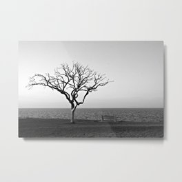 Lonely Tree by Lake Pontchartrain Metal Print