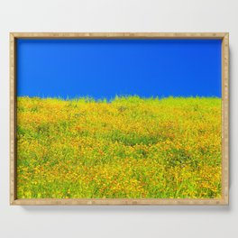 yellow poppy flower field with green leaf and clear blue sky Serving Tray