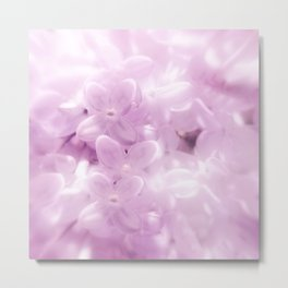 Softly Comes The Spring Metal Print