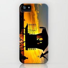 Seagull Sunset ~ Huntington Beach  iPhone Case