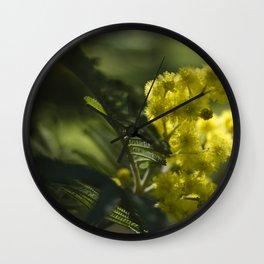 Silver wattle #1 Wall Clock