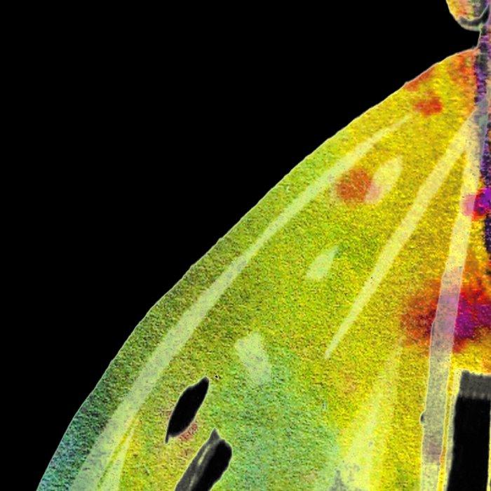 Butterfly QP Leggings