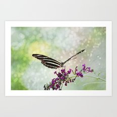 Born to Fly Art Print