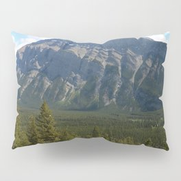Enjoying The Beautiful View Pillow Sham