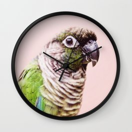 Parot Photography | Peek-a-boo | Tropical | Wildlife | Bird | Blush Pink Wall Clock