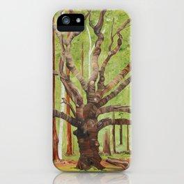Ancient Oak iPhone Case