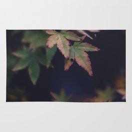 Hints of Autumn Rug