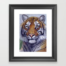 Tiger  CC118 bis Framed Art Print
