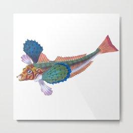 Gurnard Sapphrine Fish Metal Print