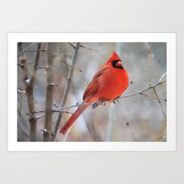 Northern Cardinal | Watercolor Art Print