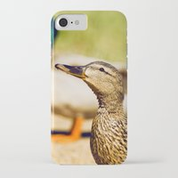 duck iPhone & iPod Cases featuring duck by LainPhotography
