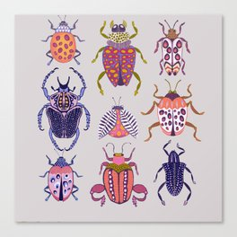 Assorted Beetles Canvas Print