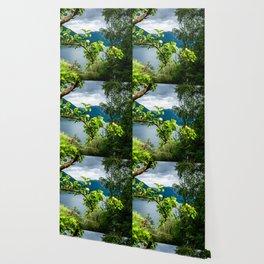 AppleTree Wallpaper