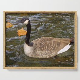 Canada Goose Swimming Serving Tray