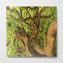 Trangle tree Metal Print