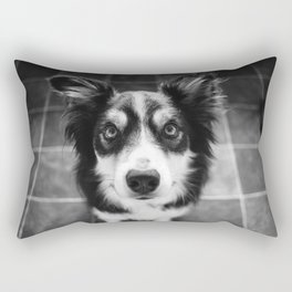 Tri-coloured border collie. Rectangular Pillow