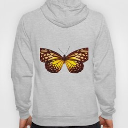 Butterfly - Yellow Brown & Black - Back Lit Glow Hoody