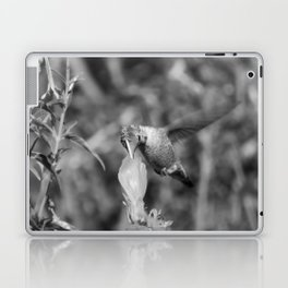 Hummingbird and the Flower- Black and White Laptop & iPad Skin