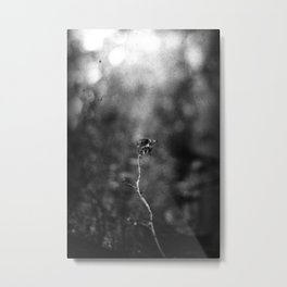 Scorched Metal Print