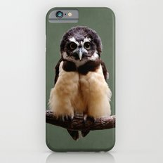Adorable Spectacled Owl Slim Case iPhone 6s