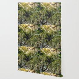 Jungle Canopy Wallpaper