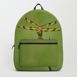 Dragon Fly Backpack