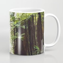 Redwood path Coffee Mug