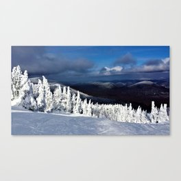 Top of the Hill Canvas Print