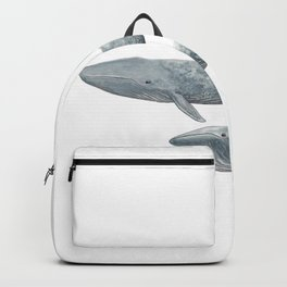 Blue whales (Balaenoptera musculus) - Blue whale Backpack
