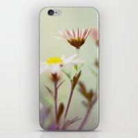 blush iPhone & iPod Skins featuring Blush by Sandra Arduini
