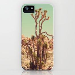 Joshua Tree#2  iPhone Case