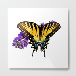swallowtail and flowers Metal Print