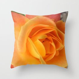 Cold Day, Warm Colors Throw Pillow