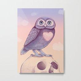Little Owl + Skull Metal Print