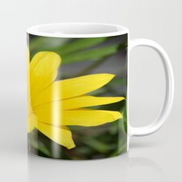 Bright Yellow Gazania Flower Coffee Mug
