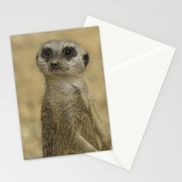 Frank the meerkat Stationery Cards