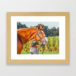 Horse head photo closeup Framed Art Print