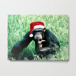 Bah Humbug Chimp Metal Print